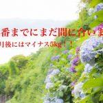 沖縄県女性限定筋トレジム